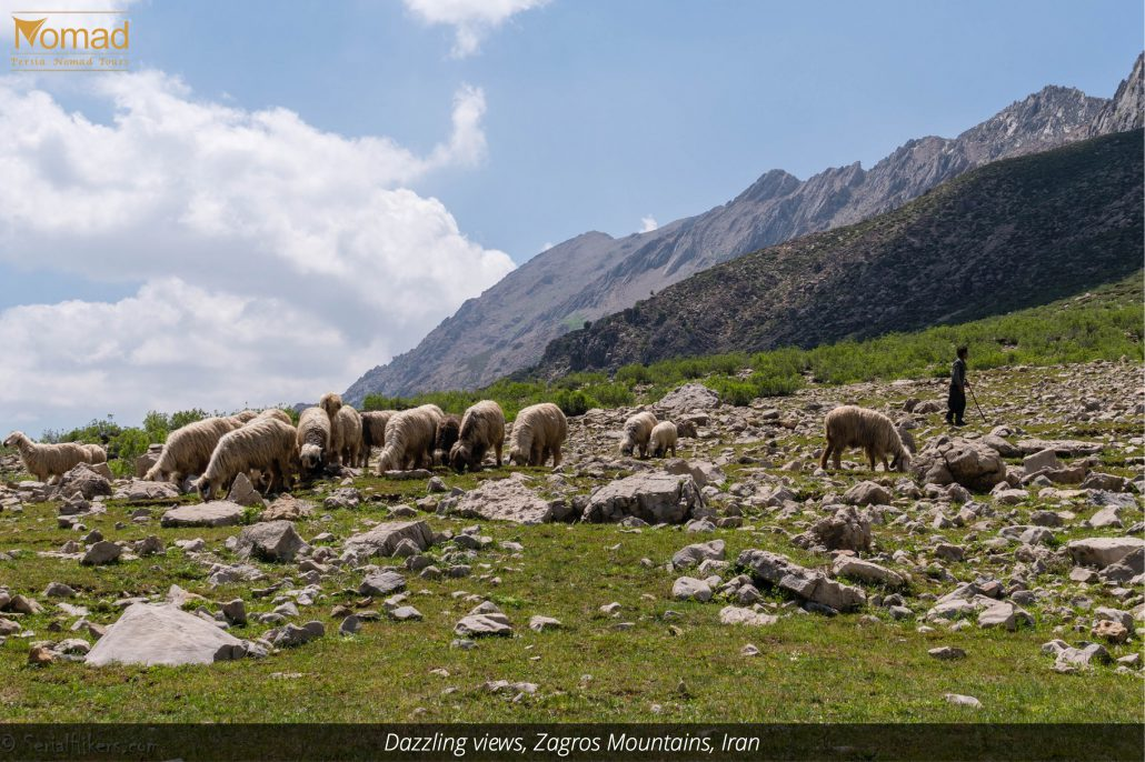 Intact Nature of Central Zagros Mountains in Iran