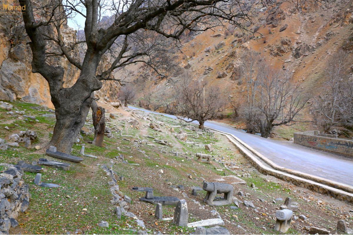 bakhtiari cemetery