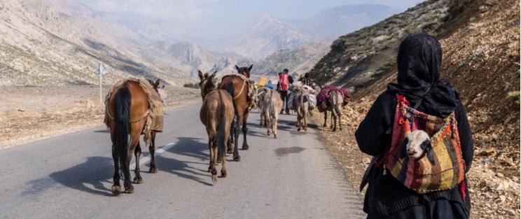 Migration Nomads Bakhtiari