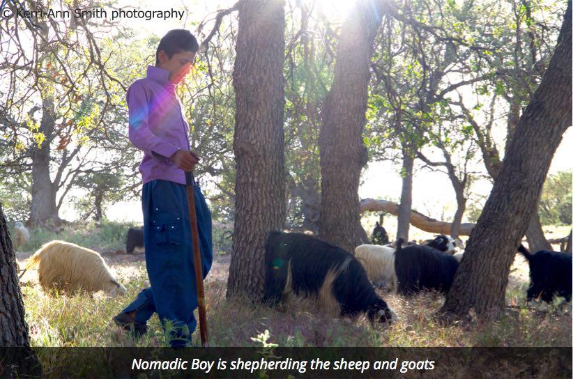 Shepherding boy Bakhtiari nomads of Iran