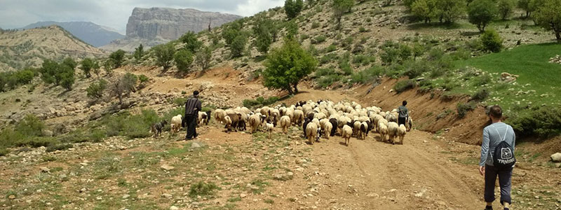 Kooch Tour Visit Iran