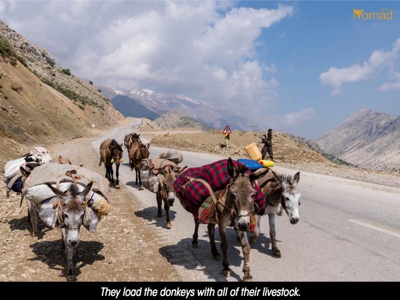 Iran Bakhtiari tribes