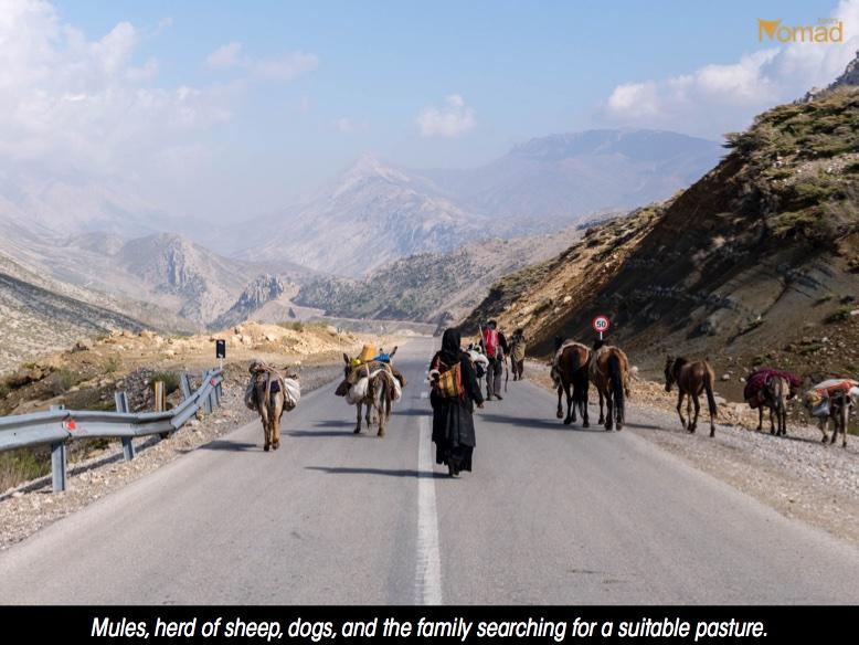 Bakhtiari migration Iran nomads