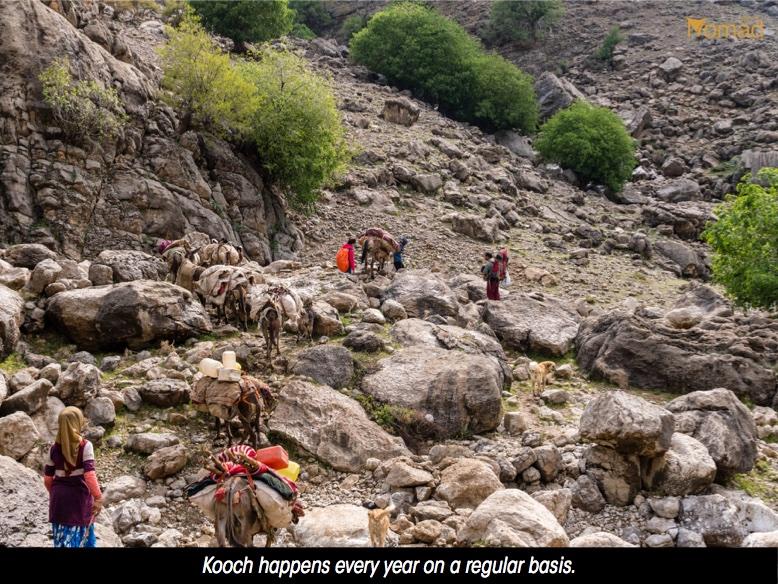 Iran bakhtiari Tribes nomads