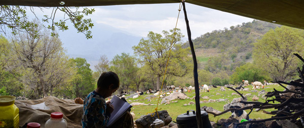Nomad School - Nature School in heart of Zagros Mountains