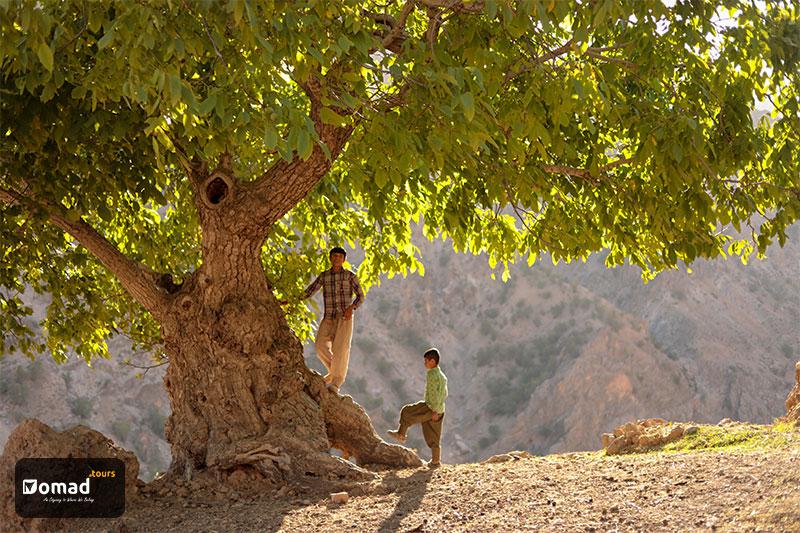 Authentic Classic Iran Nomad Tours