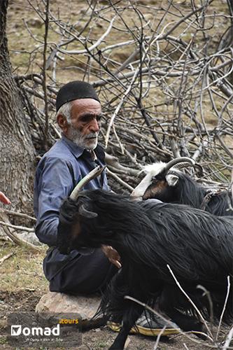 bakhtiari man iranian nomads