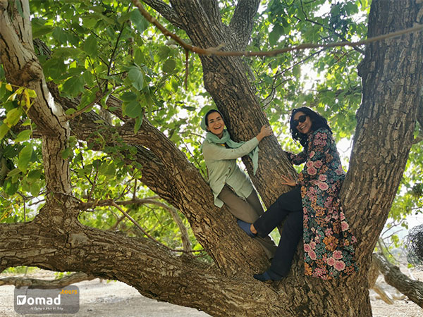 travel with nomads of iran