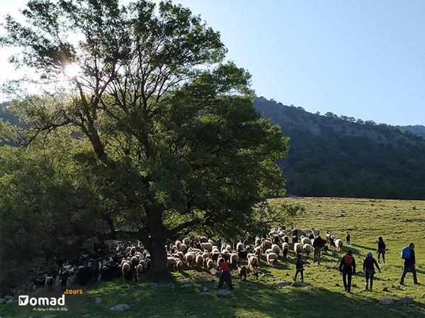 Beautiful Zagros Mountains Scenery- iran nomad tours