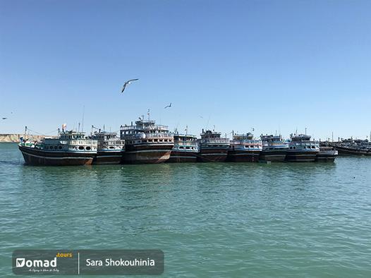 Southern Seascape- iran nomad tours