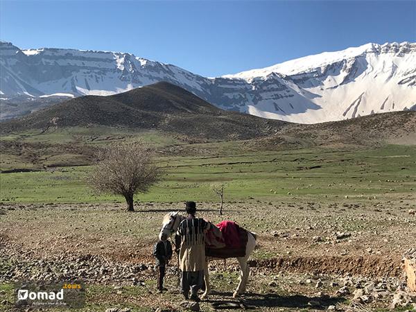 iranian nomad family bakhtiari tribe