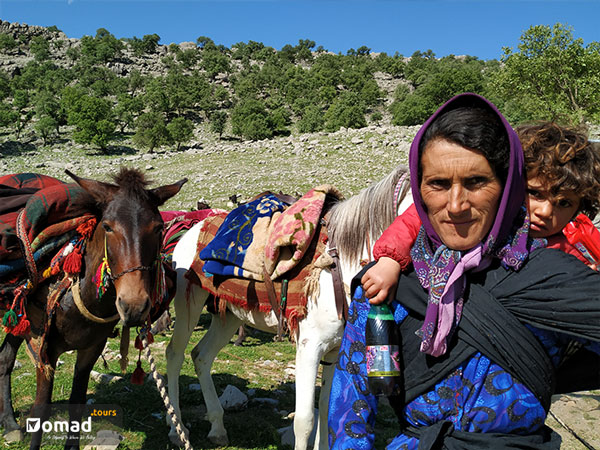 iranian nomadic woman with her child and horses
