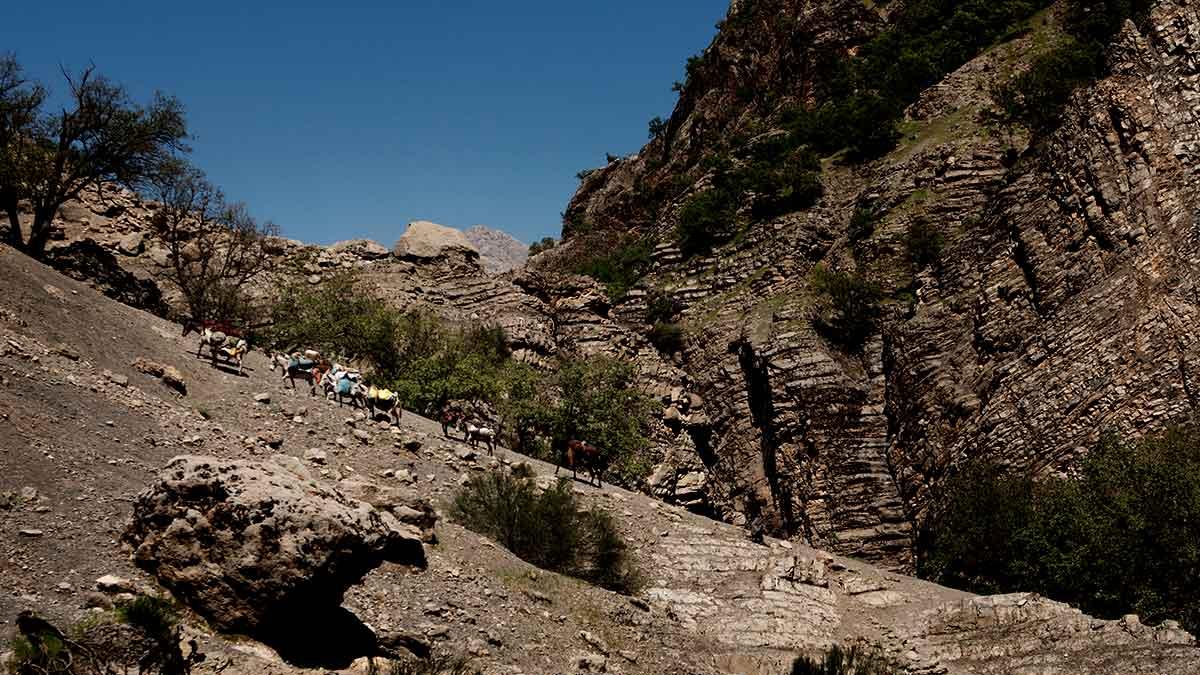 iran nomad tours-kooch