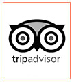Trip Advisor- business partner with iran nomad tours