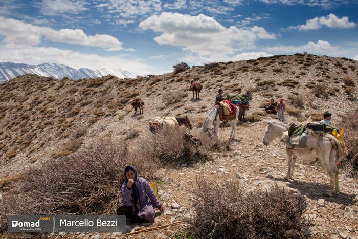 nomads taking rest during seasonal migration- kuch