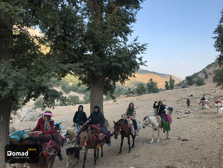 A group of nomad women riding their horses duringl kooch